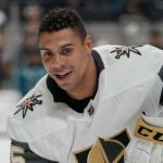 Ryan Reaves - A Canadian-American Professional Ice Hockey Player, Representing Vegas Golden Knights in NHL, Who Kicked Off His Career Since The 2000 Quebec International Pee-Wee Hockey Tournament